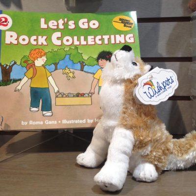 Summer Grandparents Camp – Let's Go Rockhunting!